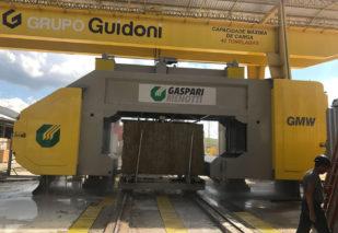 reference-GMW-2000-Guidoni-Brasile